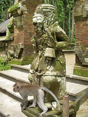 célibataire datant de l'Indonésie